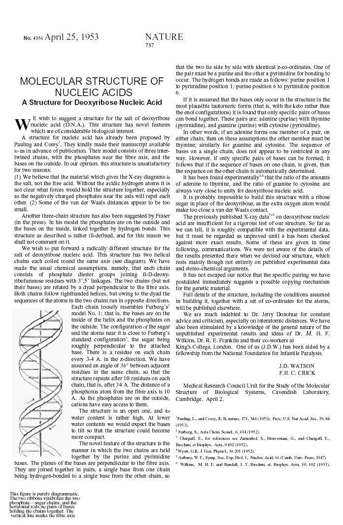 watson-crick research paper